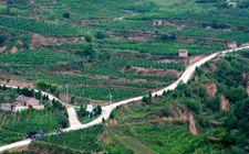 <b>贵州省将退耕还林建设扶贫工程列为重点任务</b>