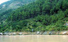 <b>湖北省将全面推行以森林公安为主体的林业综合行政执法体制</b>