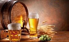 啤酒涨价超市难觅3元啤酒 高端啤酒销量增长160%