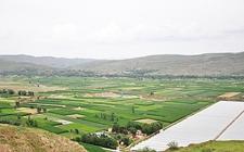 四川落实乡村振兴战略 推动农业高质量发展