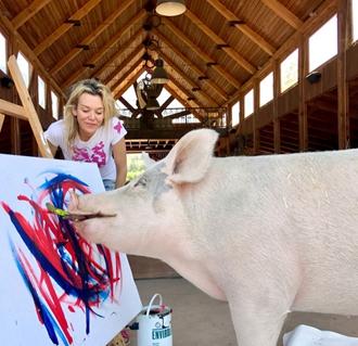 南非小猪即将在全球办画展?真的吗?