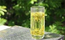 著名黄茶:霍山黄芽功效及详细介绍