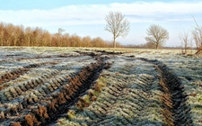 南方仍有雨雪天气 农业生产要做好防寒防冻工作