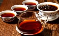 轻发酵、重发酵、发酵适中,哪个发酵程度的普洱茶更好喝?