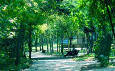 """<b>国家珍贵树种培育示范优秀基地评选结果出炉 广东省考评均为""""优秀""""</b>"""