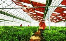 """山东《意见》提出农业""""新六产""""发展目标"""