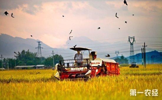 加快发展农业生产性服务业  落实乡村振兴战略