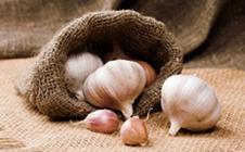 大蒜叶枯病如何防治?防治大蒜叶枯病的主要措施