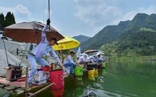 "<b>贵州松桃:大力发展水产养殖 生态水成""致富水""</b>"
