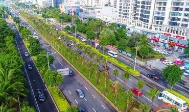 """海南省今年继续抓好""""绿化宝岛""""造林绿化 完成10万亩造林任务"""
