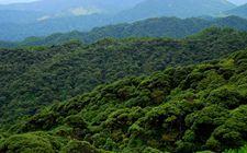 <b>山西省国有林场改革实现重大突破 改革主体任务全面完成</b>