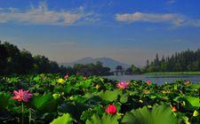 <b>浙江省杭州市正式启动全省首个世界珍稀濒危植物园建设工程</b>