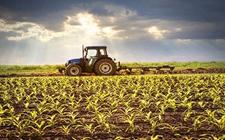 领农业补贴怎样提高成功率?这几个部门可以帮助您