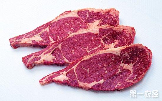 2017年下半年羊肉价格持续上涨 专家称春节不大可能大涨