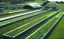 """甘肃:农业环保取得""""两稳三提""""新成效 进一步提升生态循环农业建设"""