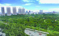 沈阳市积极打造美丽沈阳生态名片 争取景观类树种达30%以上