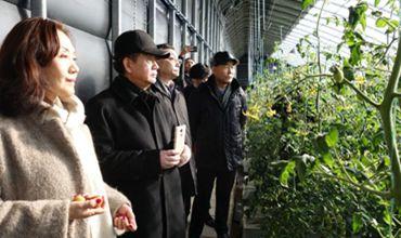建设科技示范大棚助推农业产业扶贫现场观摩会于近日举行