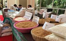 中国同意购买30万吨柬埔寨大米 柬大米同时将出口至俄