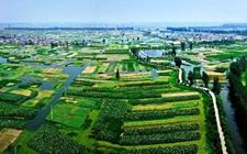 <b>江苏:大力发展休闲观光农业推进乡村振兴</b>