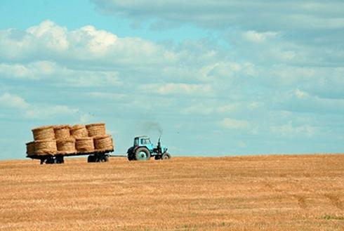 消费升级背景下,农村电商未来五年的发展趋势!