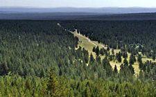"""5年来内蒙古自治区森林面积和蓄积实现""""双增长"""""""