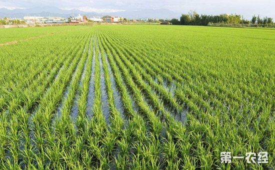 六部委联合印发《生态扶贫工作方案》  力争带动1500万贫困人口增收