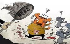 """<b>基层选举有问题?国家发话!打击基层腐败,查出""""微腐败""""</b>"""