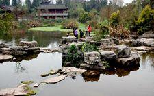 重庆新增5处湿地公园 至此国家湿地公园总数达到13个