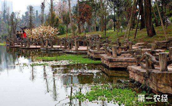 重庆:严守310万亩湿地红线  2022年前建成22个国家湿地公园