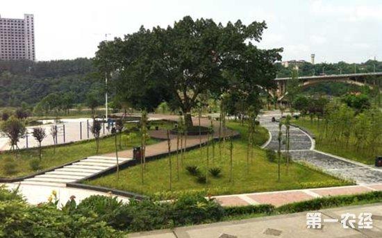潼南滨江湿地公园