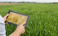 <b>福建省多措并举提升数字农业发展水平 加快农业生产智能化</b>