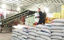 春季备耕在即,3000多吨农资正配送到各零售点