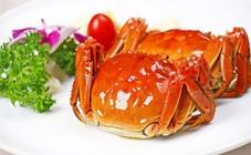 什么是河蟹颤抖病?河蟹颤抖病的症状及防治方法