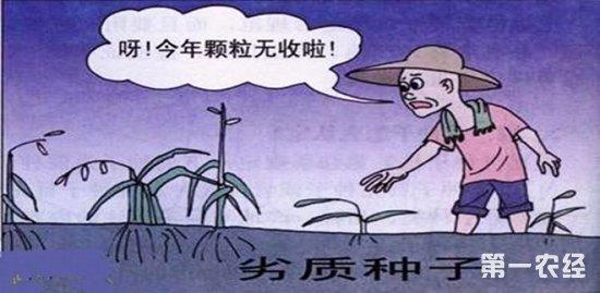 《种子法》非主要农作物品种登记办法