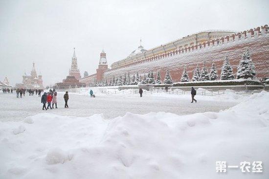 莫斯科百年来最大降雪致一人死亡多人受伤