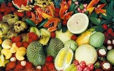 越南成泰国2017年水果出口最大市场