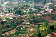 《农村人居环境整治三年行动方案》