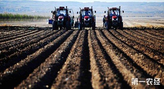 湖北沙洋县投资3.97亿元建设高标准农田22.64万亩