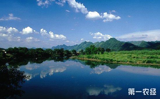 """积极践行""""绿水青山就是金山银山""""理念  各省林业晒出漂亮成绩单"""