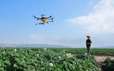 """<b>农科院设计""""三步走""""蓝图 为乡村振兴提供强大科技支撑</b>"""