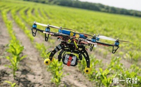中央一号文件再次聚焦知识产权  为促进农业科技创新播撒种子