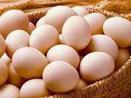 鸡蛋价格行情恢复稳定,稳中有跌 鸡价回归跌势