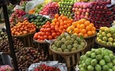 越南计划向卡塔尔出口水果 并将果蔬出口推广至中东国家