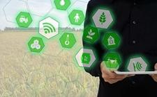 <b>福建:七方面扶持推进数字农业发展 建成现代农业智慧园50个以上</b>