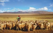 2018加拿大国际农业、畜牧业及园艺展的时间、地点及详情