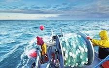2017年浙江省近万名渔民主动退出海洋捕捞