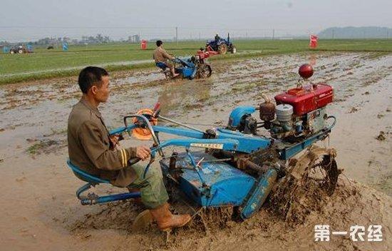 江西年投超20亿元发展这九大农业产业