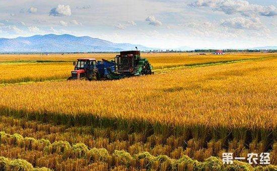 """深入落实精深加工升级、龙头企业提升等""""十大工程"""",着力发展米、稻、乳、肉等""""十大产业"""",增强主要农产品就地加工转化能力。全省规上农业产业化龙头企业要发展到2050个,销售收入达到3300亿元。加强休闲农业、特色村镇和美丽乡村推介,举办最美休闲乡村和精品线路评选活动,吸引更多省内外游客到农村游玩消费。全省休闲农业经营主体要发展到6100个,营业收入要达到90亿元。支持各地围绕产业融合模式、主体培育等开展试点探索。进一步推广""""保底收益+按股分红&"""