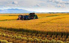 黑龙江:坚持以乡村振兴战略为统领 加快农业农村经济高质量发展