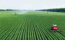 辽宁:建成高标准高质量绿色粮仓